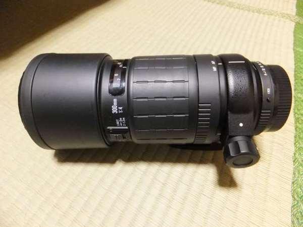 DSCF5221.JPG