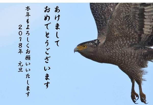 あけおめ.jpg