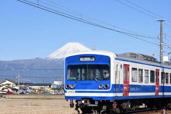 DSC_7303.JPG